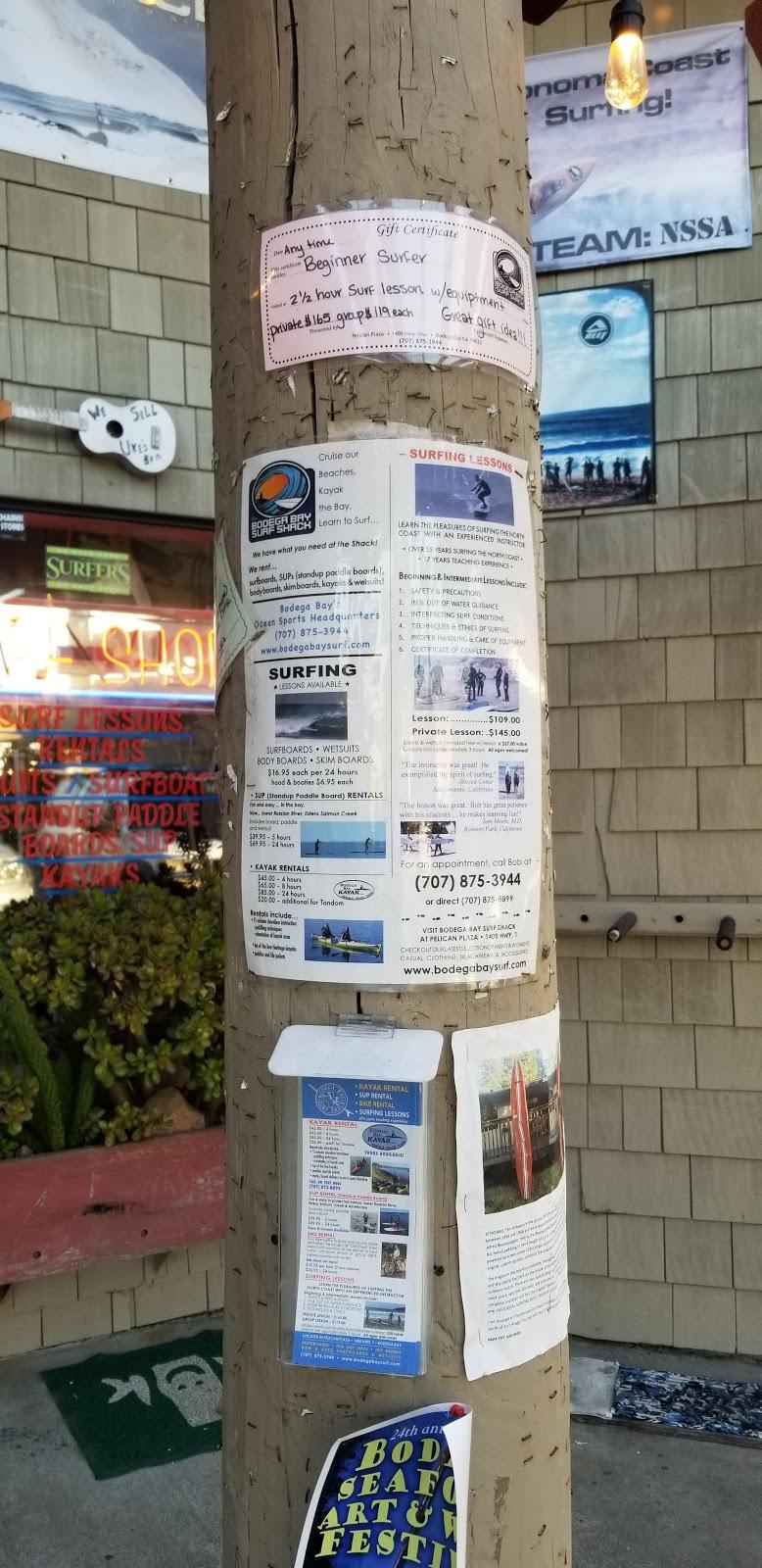 Bodega Bay Surf Shack - store  | Photo 6 of 8 | Address: 1400 CA-1 e, Bodega Bay, CA 94923, USA | Phone: (707) 875-3944
