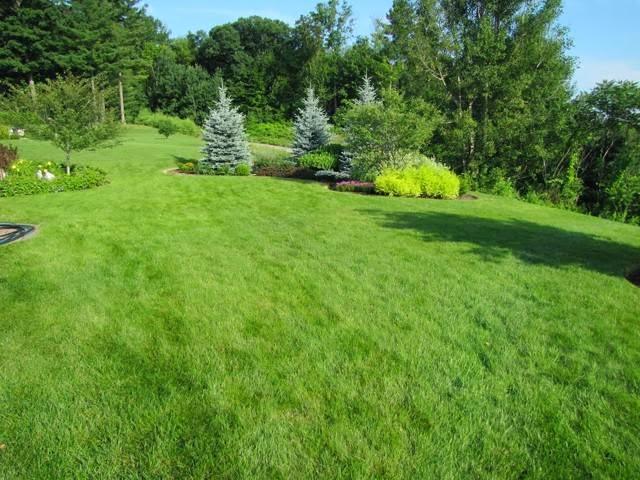 Lawn Dawg - home goods store  | Photo 2 of 10 | Address: 38 U.S. 9, Fishkill, NY 12524, USA | Phone: (845) 795-7044