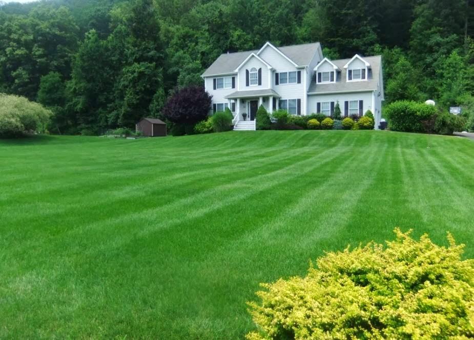 Lawn Dawg - home goods store  | Photo 10 of 10 | Address: 38 U.S. 9, Fishkill, NY 12524, USA | Phone: (845) 795-7044