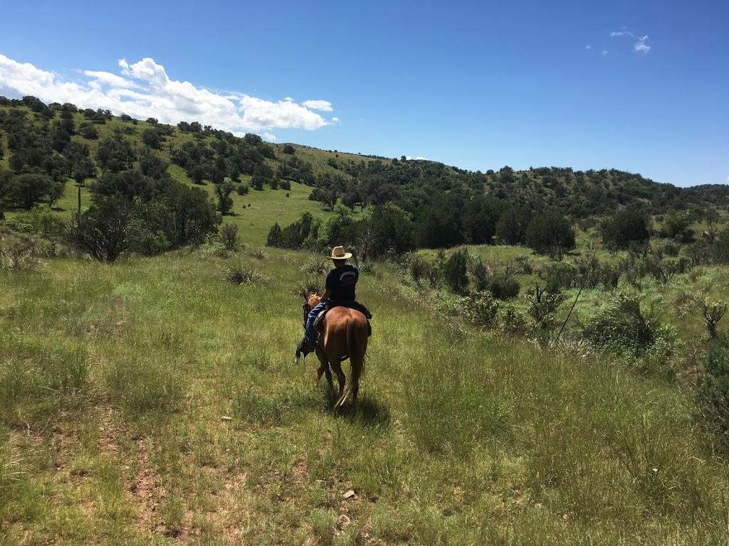 Ariz Horseback Experience - store    Photo 5 of 10   Address: 16 Coyote Ct, Sonoita, AZ 85637, USA   Phone: (520) 455-5696