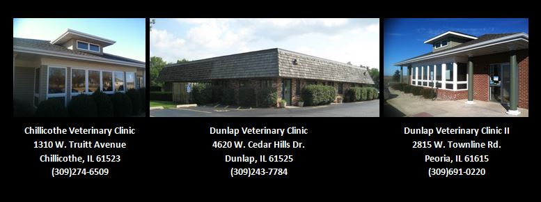 Peoria Area Veterinary Group of Chillicothe | pharmacy | 1310 W Truitt Ave, Chillicothe, IL 61523, USA | 3092746509 OR +1 309-274-6509