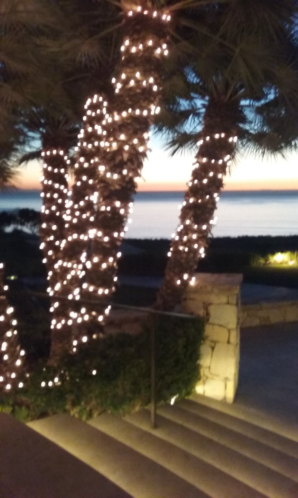 Golfers Lounge - restaurant  | Photo 6 of 6 | Address: 1 Trump National Dr, Rancho Palos Verdes, CA 90275, USA | Phone: (310) 303-3260