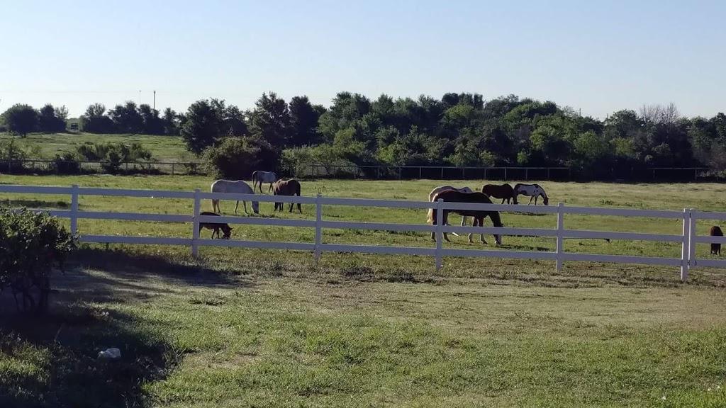 Harmony Acres Ranch - travel agency    Photo 7 of 10   Address: 19512 Eyerley Rd, Manor, TX 78653, USA   Phone: (512) 713-8660