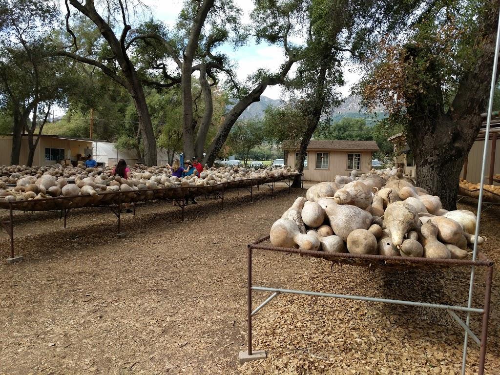 Welburn Gourd Farm - store    Photo 5 of 10   Address: 40635 De Luz Rd, Fallbrook, CA 92028, USA   Phone: (760) 728-4271