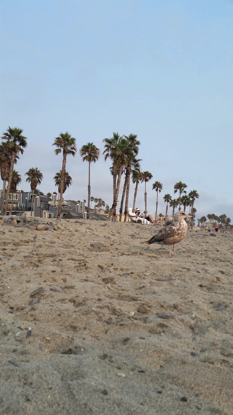 Oceanside Holiday - Beach Vacation Rental | real estate agency | 999 N Pacific St d311, Oceanside, CA 92054, USA | 7608450105 OR +1 760-845-0105