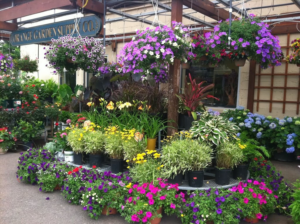 Orange Garden Center - store    Photo 7 of 10   Address: 360 Alden St, City of Orange, NJ 07050, USA   Phone: (973) 672-2212