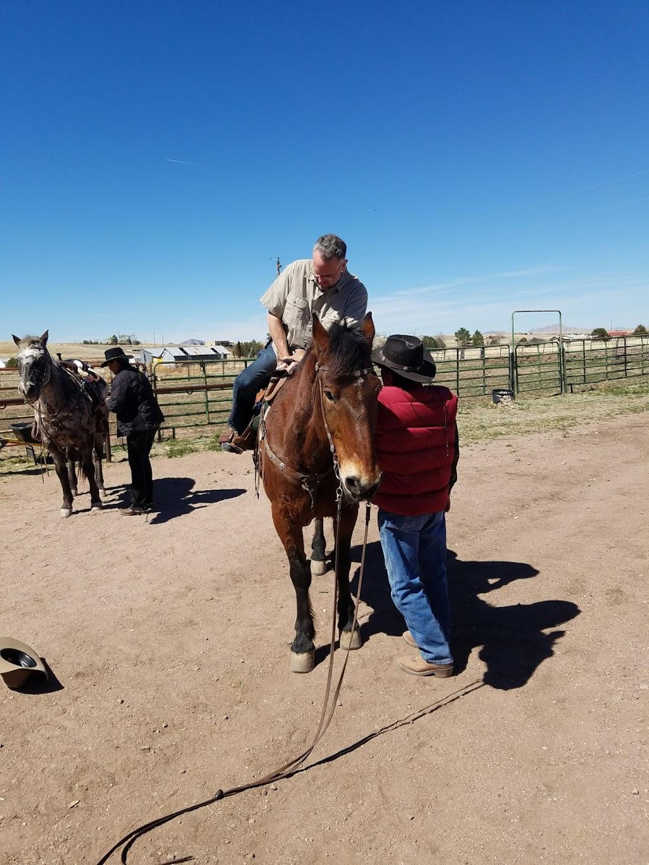 Ariz Horseback Experience - store    Photo 7 of 10   Address: 16 Coyote Ct, Sonoita, AZ 85637, USA   Phone: (520) 455-5696