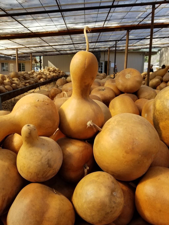 Welburn Gourd Farm - store    Photo 6 of 10   Address: 40635 De Luz Rd, Fallbrook, CA 92028, USA   Phone: (760) 728-4271