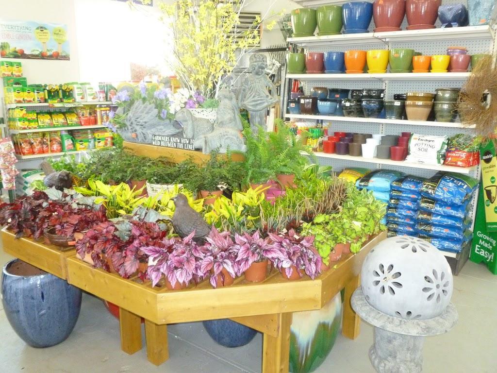 Orange Garden Center - store    Photo 4 of 10   Address: 360 Alden St, City of Orange, NJ 07050, USA   Phone: (973) 672-2212