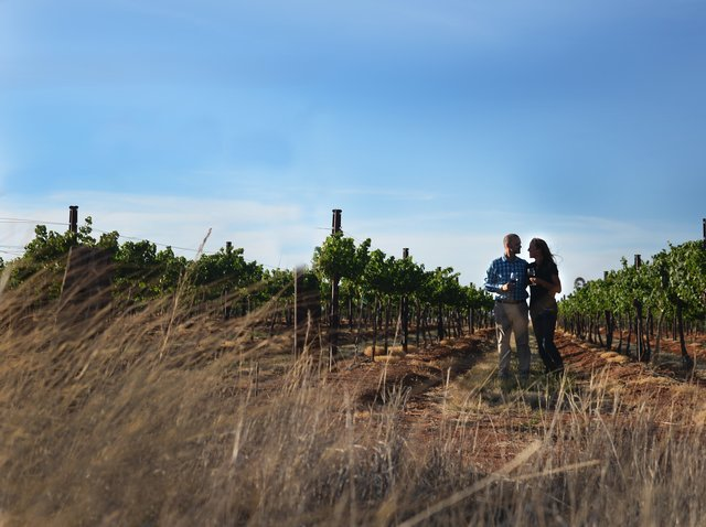 Sonoita Elgin Wine Tours - travel agency  | Photo 2 of 3 | Address: 39 Sunrise Ln, Elgin, AZ 85611, USA | Phone: (208) 315-5580