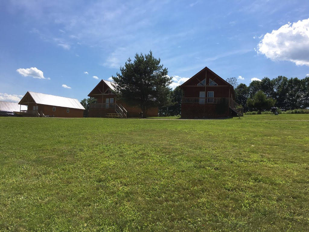 Double Play Cabins - real estate agency    Photo 1 of 5   Address: 456 Maples Rd, Milford, NY 13807, USA   Phone: (607) 435-0076
