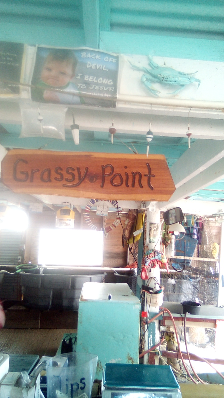 Grassy Point Bait - store  | Photo 1 of 10 | Address: 529 E Bayshore Dr, Palacios, TX 77465, USA | Phone: (361) 972-5053