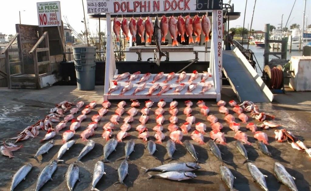 Dolphin Dock Inc. - travel agency  | Photo 4 of 10 | Address: 300 W Cotter Ave, Port Aransas, TX 78373, USA | Phone: (800) 393-3474