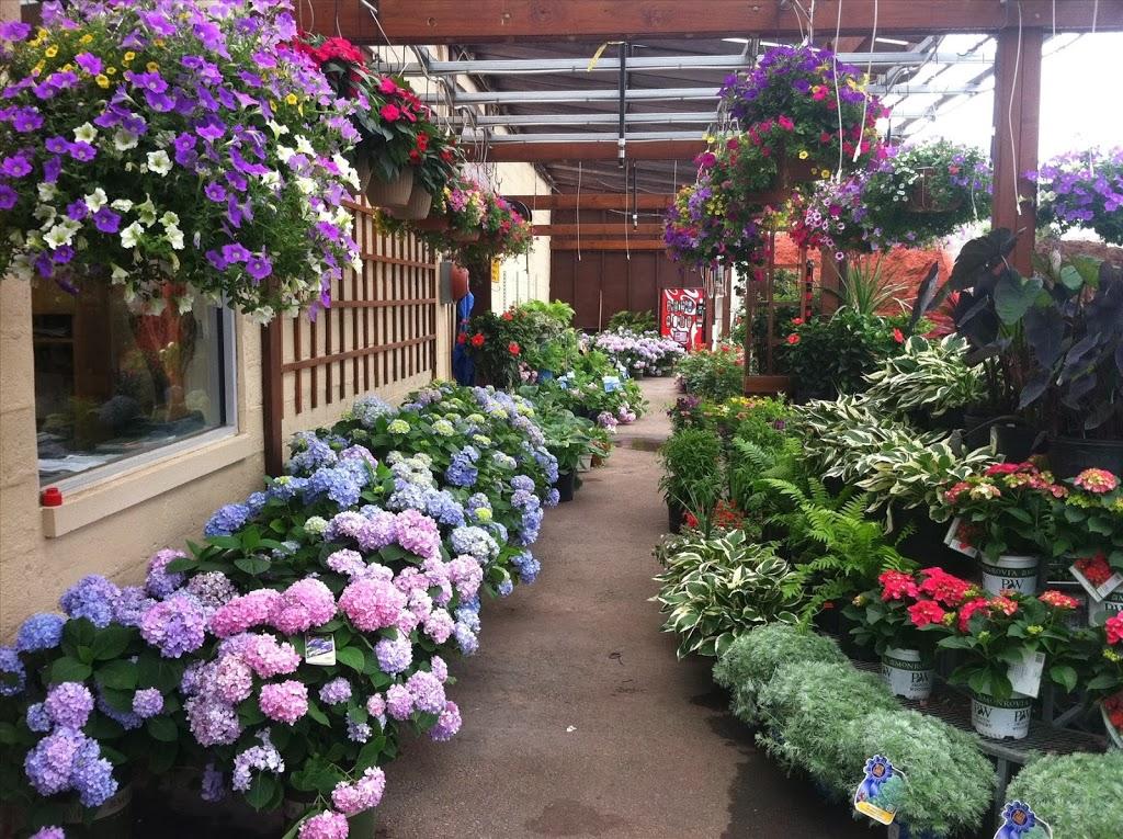 Orange Garden Center - store    Photo 5 of 10   Address: 360 Alden St, City of Orange, NJ 07050, USA   Phone: (973) 672-2212