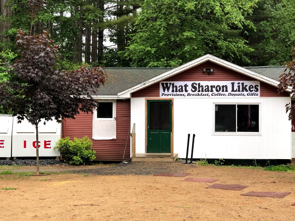 What Sharon Likes | home goods store | 318 Houseman St, Mayfield, NY 12117, USA | 5189253862 OR +1 518-925-3862