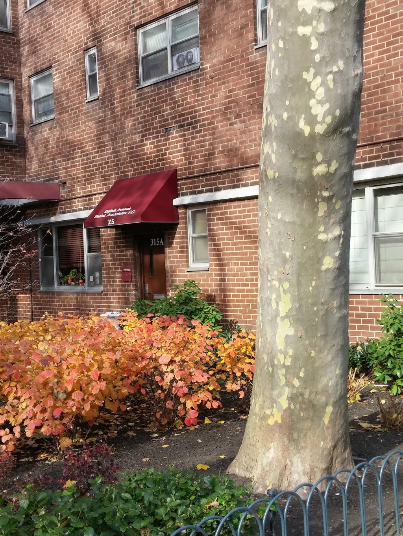 Eighth Avenue Dental Associates   dentist   315 8th Ave # 2, New York, NY 10001, USA   2122433989 OR +1 212-243-3989