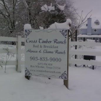 Cross Timber Ranch Bed & Breakfast - lodging  | Photo 6 of 10 | Address: 6271 Farm to Market Rd 858, Ben Wheeler, TX 75754, USA | Phone: (903) 833-9000