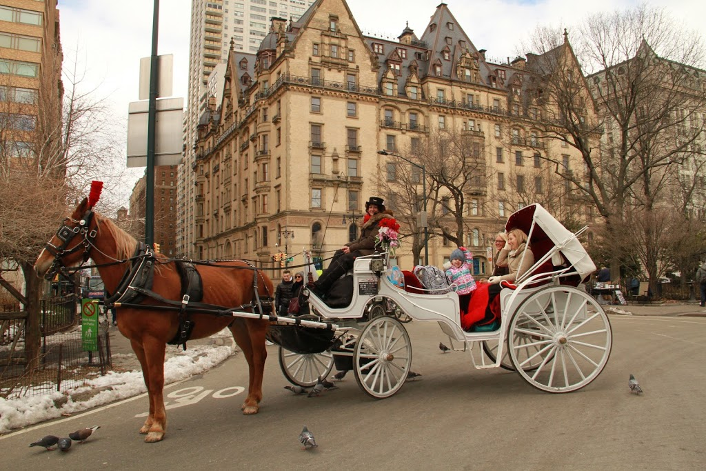 NYC Horse Carriage Rides™ | travel agency | 7th Ave & West 59th Street, New York, NY 10001, USA | 5166066212 OR +1 516-606-6212