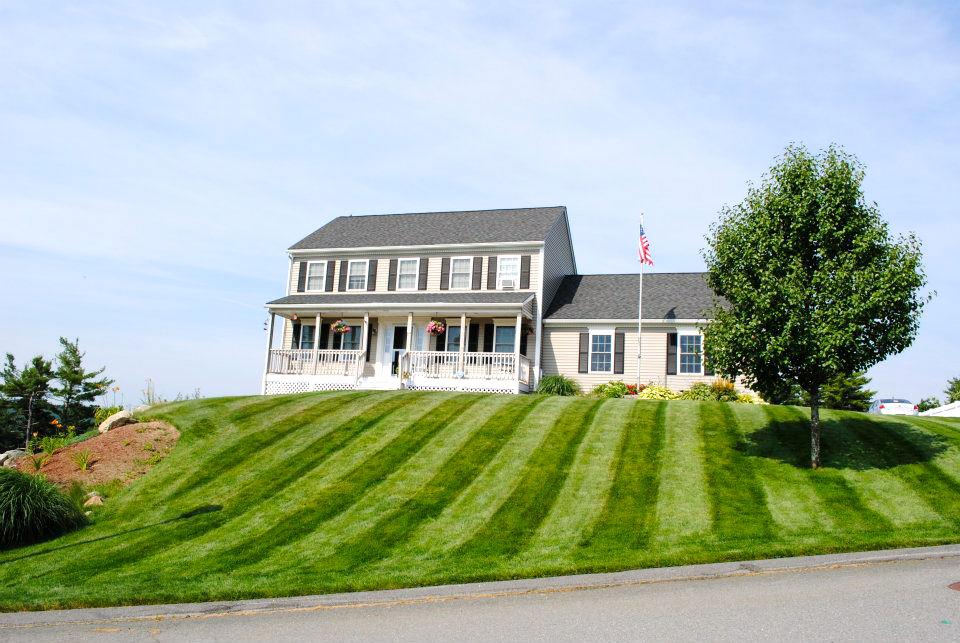 Lawn Dawg - home goods store  | Photo 4 of 10 | Address: 38 U.S. 9, Fishkill, NY 12524, USA | Phone: (845) 795-7044