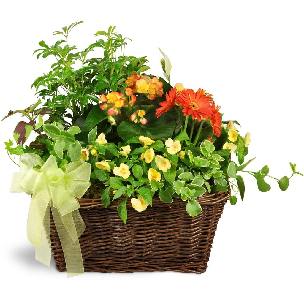 MooValley Flowers - florist  | Photo 4 of 9 | Address: 600 US-87, Stockdale, TX 78160, USA | Phone: (830) 996-3908