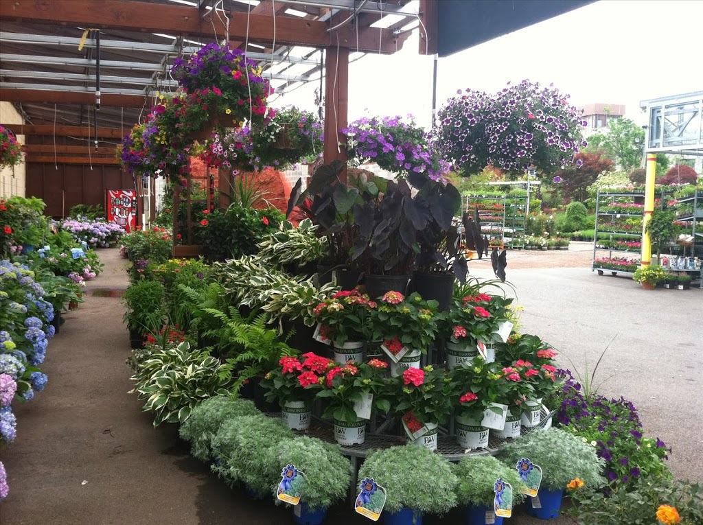 Orange Garden Center - store    Photo 10 of 10   Address: 360 Alden St, City of Orange, NJ 07050, USA   Phone: (973) 672-2212