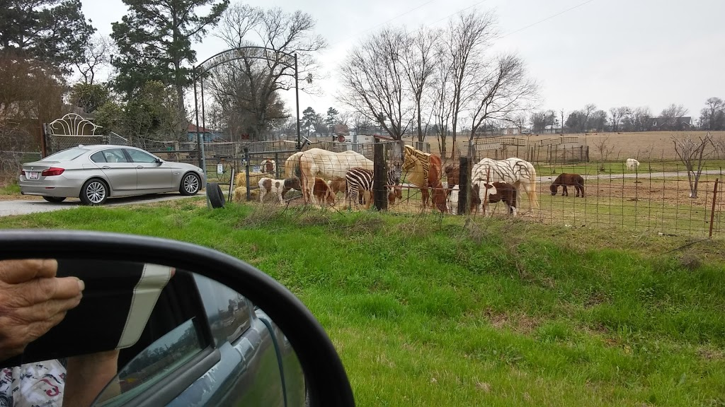 Cross Timber Ranch Bed & Breakfast - lodging  | Photo 10 of 10 | Address: 6271 Farm to Market Rd 858, Ben Wheeler, TX 75754, USA | Phone: (903) 833-9000