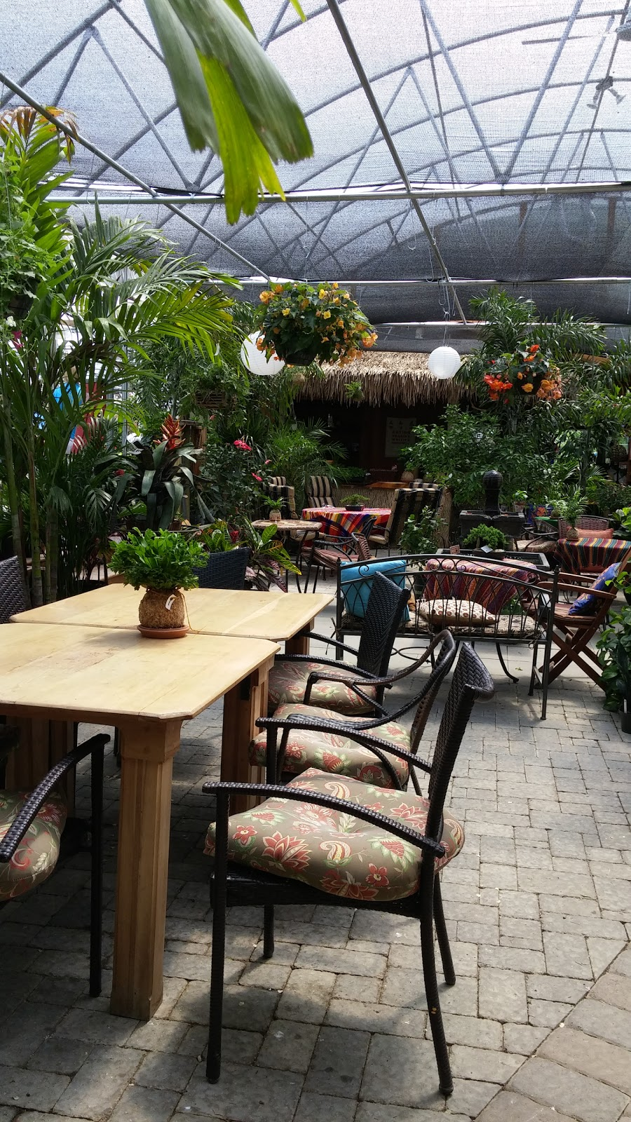 Carefree Gardens - cafe  | Photo 2 of 3 | Address: 558 Beaver Meadow Rd, Cooperstown, NY 13326, USA | Phone: (607) 547-9744