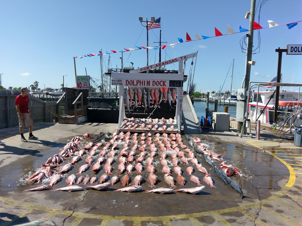 Dolphin Dock Inc. - travel agency  | Photo 5 of 10 | Address: 300 W Cotter Ave, Port Aransas, TX 78373, USA | Phone: (800) 393-3474