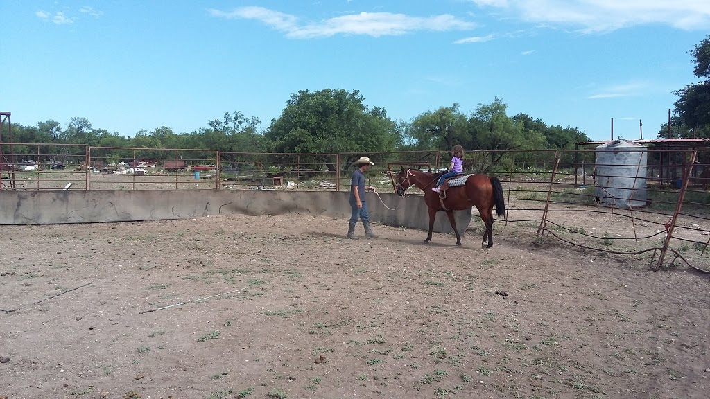 Adams Ranch Quarterhorses - travel agency  | Photo 3 of 6 | Address: 20791 US-277, Christoval, TX 76935, USA | Phone: (325) 277-4151