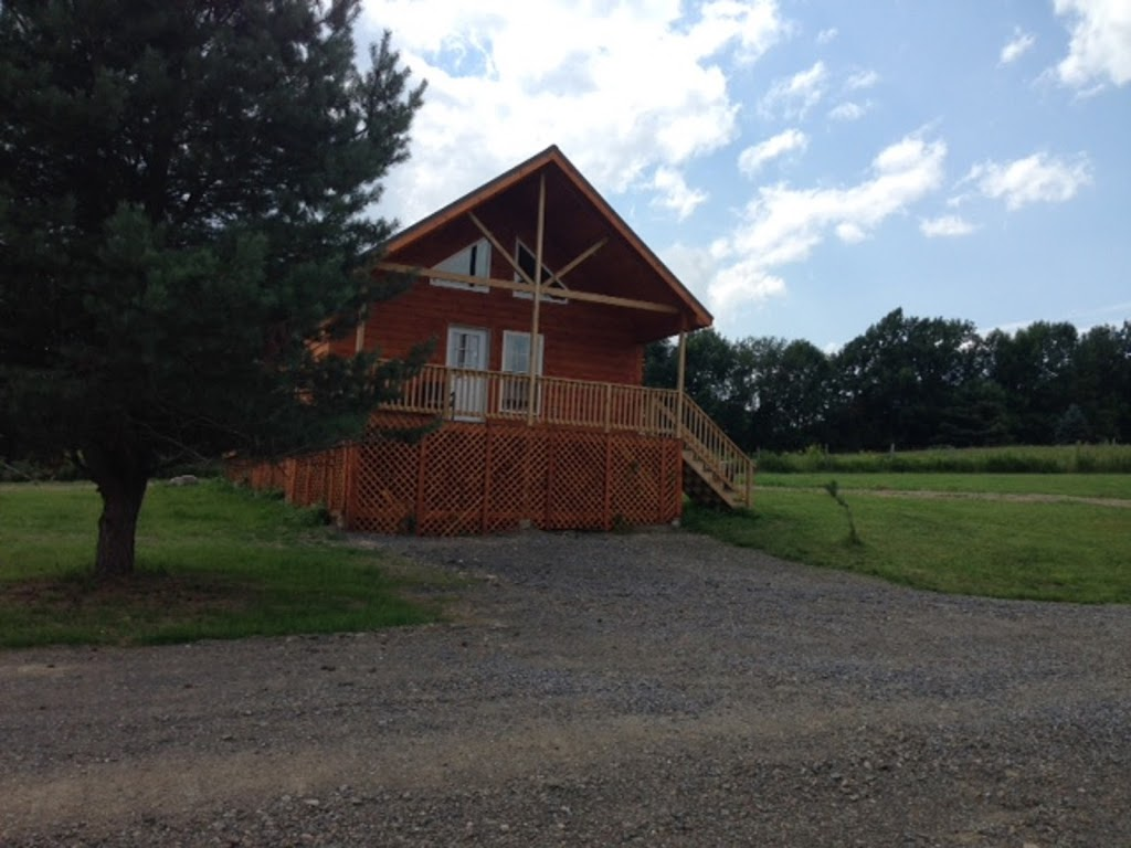 Double Play Cabins - real estate agency    Photo 2 of 5   Address: 456 Maples Rd, Milford, NY 13807, USA   Phone: (607) 435-0076