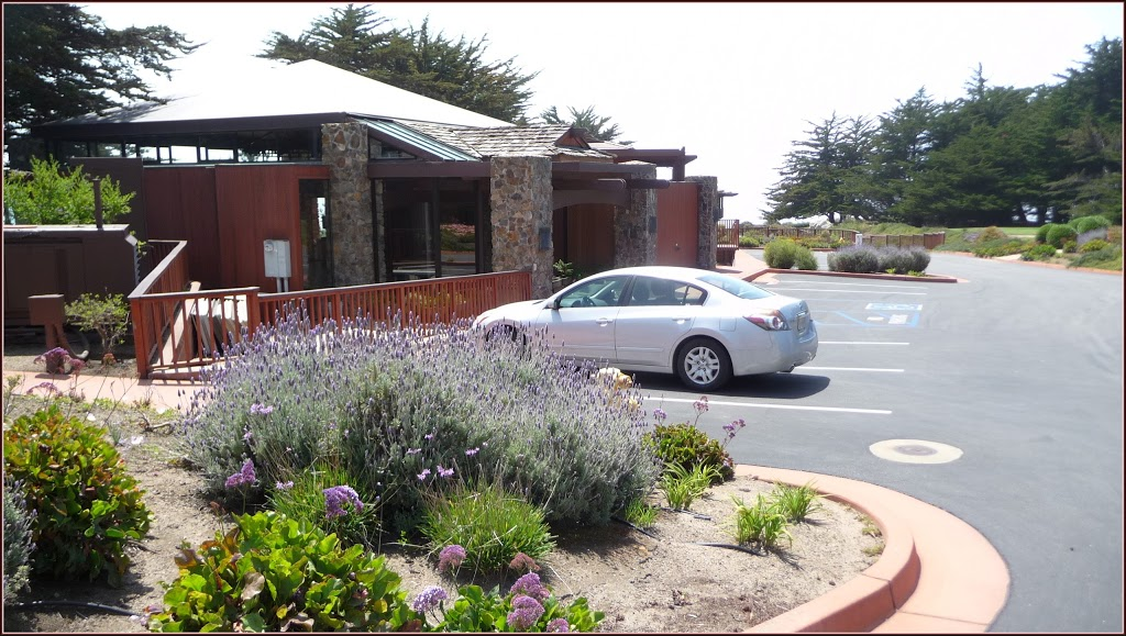Lumiere Gift Shop - store  | Photo 3 of 6 | Address: 19019 CA-1, Ragged Point, CA 93452, USA | Phone: (805) 927-4502