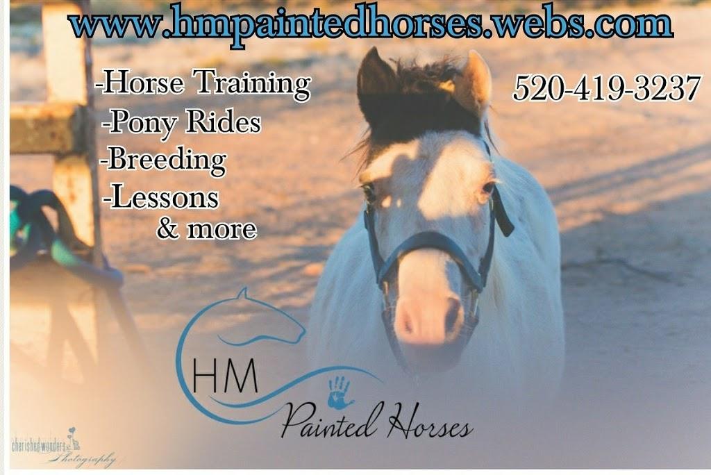 HM Painted Horses - travel agency  | Photo 1 of 1 | Address: N Salero View Rd, Vail, AZ 85641, USA | Phone: (520) 419-3237