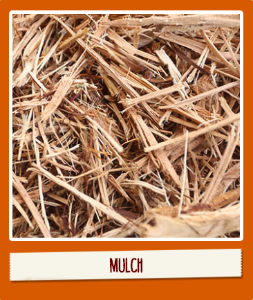 Quality Organic Products | San Antonio Topsoil, Mulch, Mixed Soi - store  | Photo 10 of 10 | Address: 15497 Lookout Rd, Selma, TX 78154, USA | Phone: (210) 651-0200
