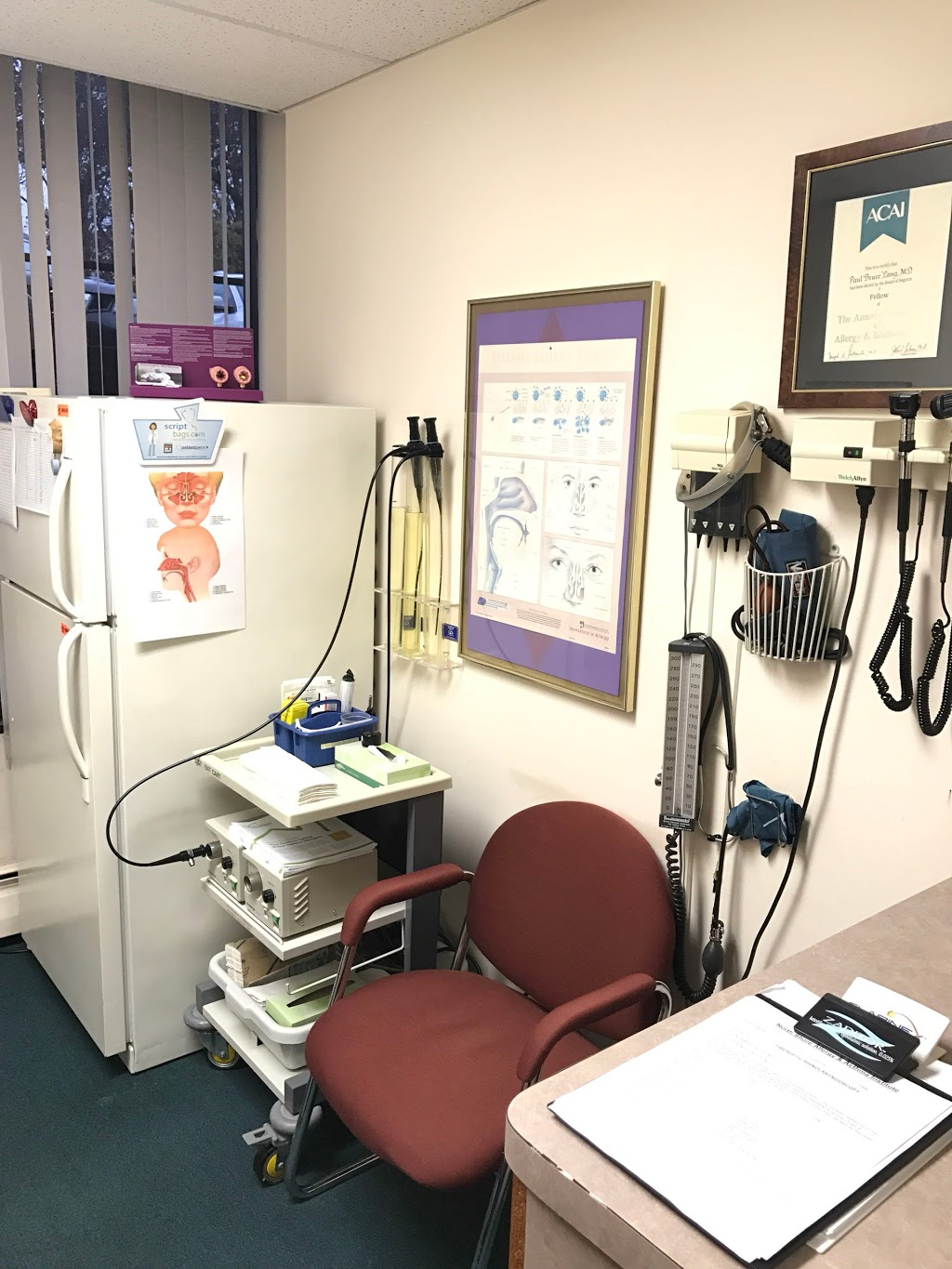 North Shore Allergy and Asthma Institute - doctor  | Photo 1 of 10 | Address: 1 Hollow Ln Suite 110, New Hyde Park, NY 11042, USA | Phone: (516) 365-6666