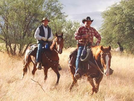 Ariz Horseback Experience - store    Photo 10 of 10   Address: 16 Coyote Ct, Sonoita, AZ 85637, USA   Phone: (520) 455-5696