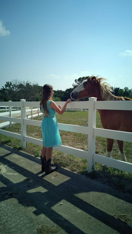 Harmony Acres Ranch - travel agency    Photo 5 of 10   Address: 19512 Eyerley Rd, Manor, TX 78653, USA   Phone: (512) 713-8660