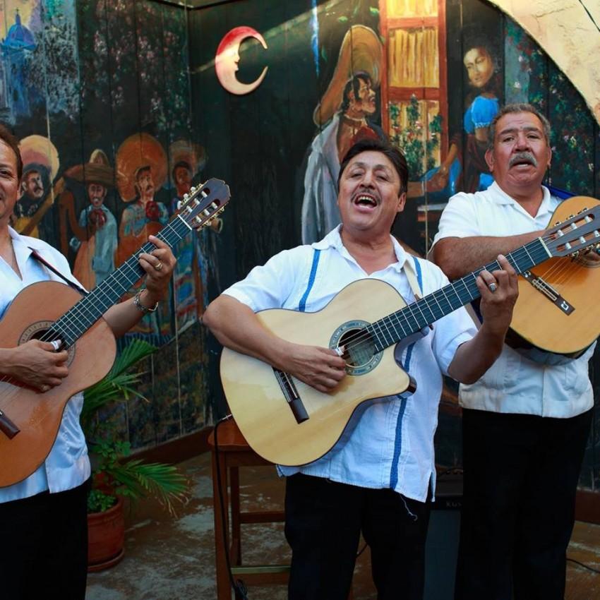 mariachi band in san jose ca - home goods store  | Photo 4 of 4 | Address: 1493 mt Shasta dr San Jose California, San Jose, CA 95127, USA | Phone: (707) 220-3597