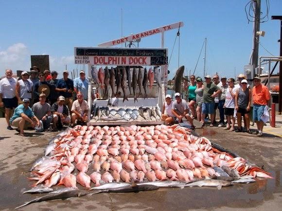 Dolphin Dock Inc. - travel agency  | Photo 1 of 10 | Address: 300 W Cotter Ave, Port Aransas, TX 78373, USA | Phone: (800) 393-3474